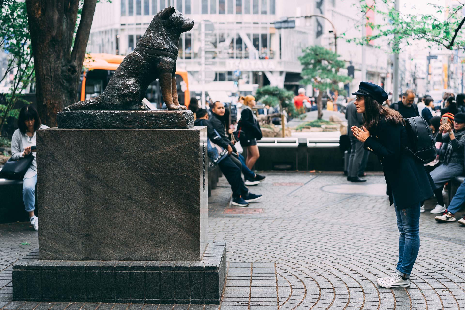 shibuya crossing tokyo hachiko